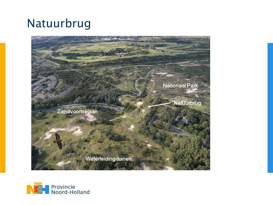 Natuurbrug Zandvoortselaan Waterleidingduinen Nationaal Park Natuurbrug