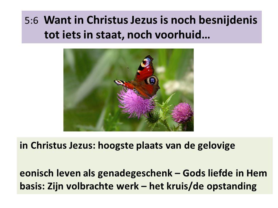 5:6 Want in Christus Jezus is noch besnijdenis tot iets in staat, noch voorhuid… in Christus Jezus: hoogste plaats van de gelovige eonisch leven als g