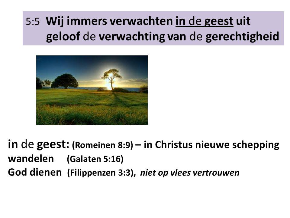 5:5 Wij immers verwachten in de geest uit geloof de verwachting van de gerechtigheid Wat doet de heilige geest?