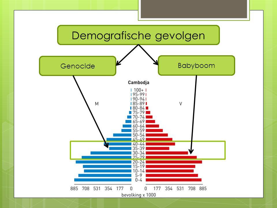 Demografische gevolgen Genocide Babyboom
