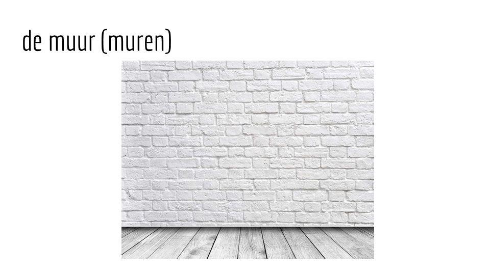 de muur (muren)