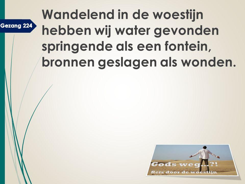 Wandelend in de woestijn hebben wij water gevonden springende als een fontein, bronnen geslagen als wonden.
