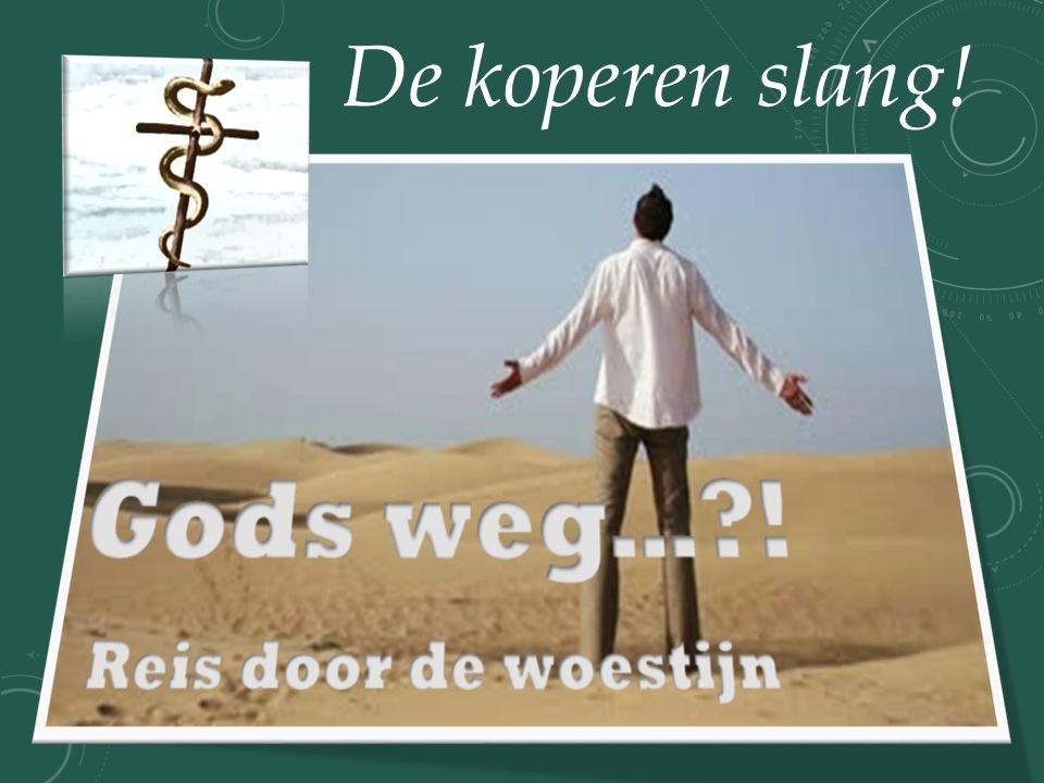 Wij spreken door de Geest, getuigen onbevreesd, want God maakt ons bekwaam profeten in zijn Naam.