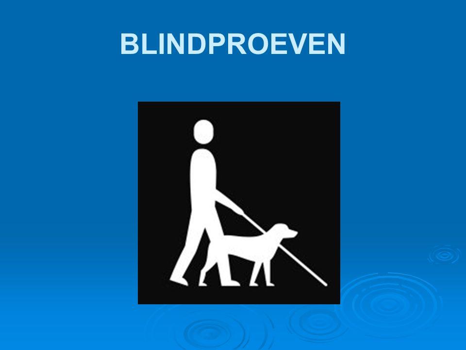 BLINDPROEVEN