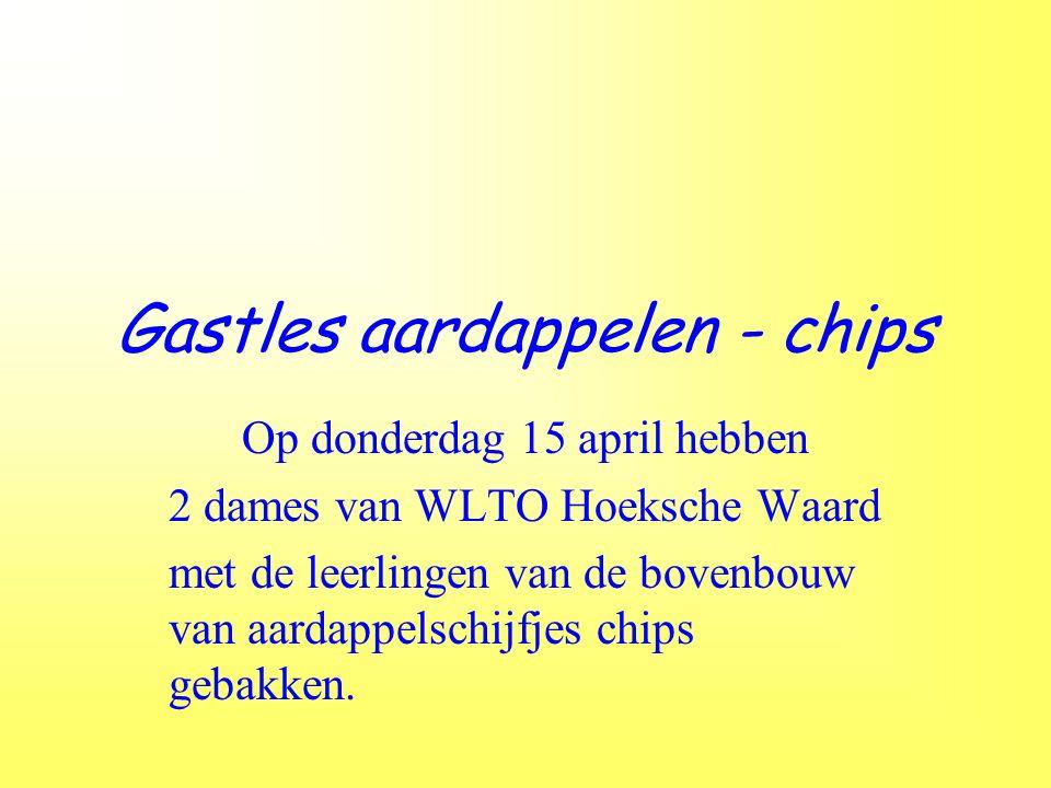 Gastles aardappelen - chips Op donderdag 15 april hebben 2 dames van WLTO Hoeksche Waard met de leerlingen van de bovenbouw van aardappelschijfjes chips gebakken.