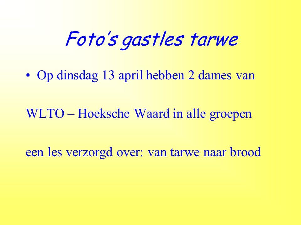 Foto's gastles tarwe Op dinsdag 13 april hebben 2 dames van WLTO – Hoeksche Waard in alle groepen een les verzorgd over: van tarwe naar brood
