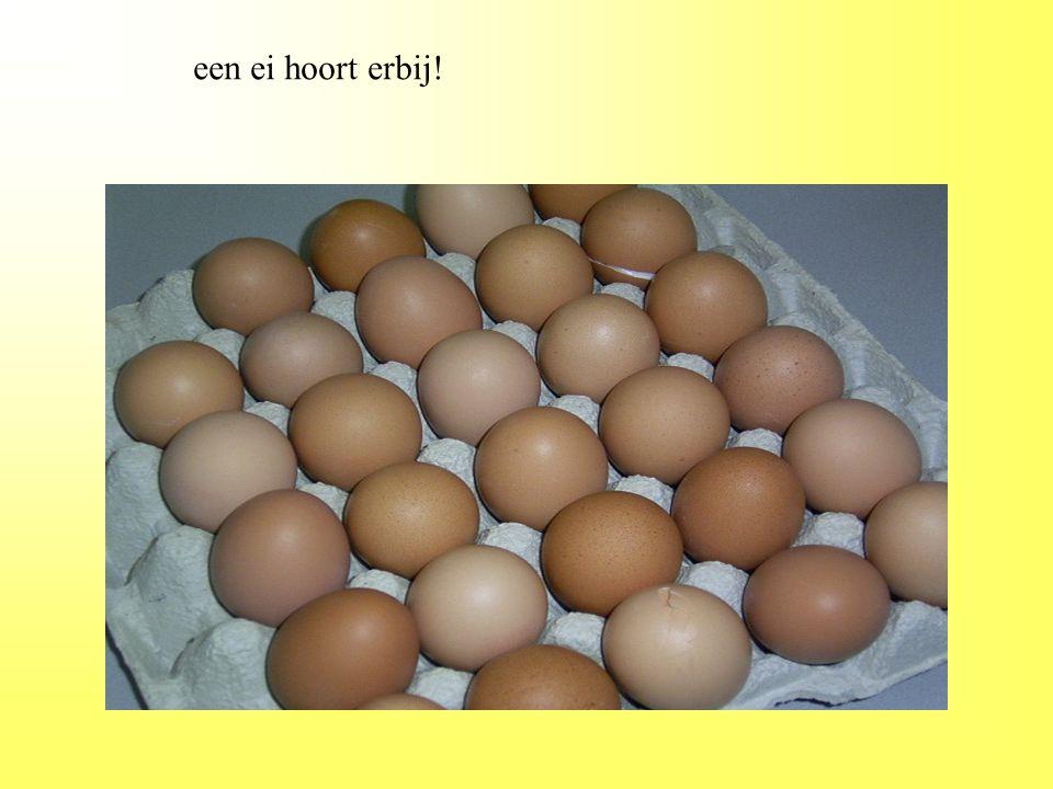 een ei hoort erbij!