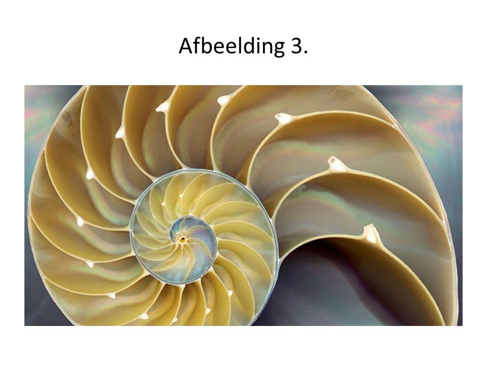 Afbeelding 3.