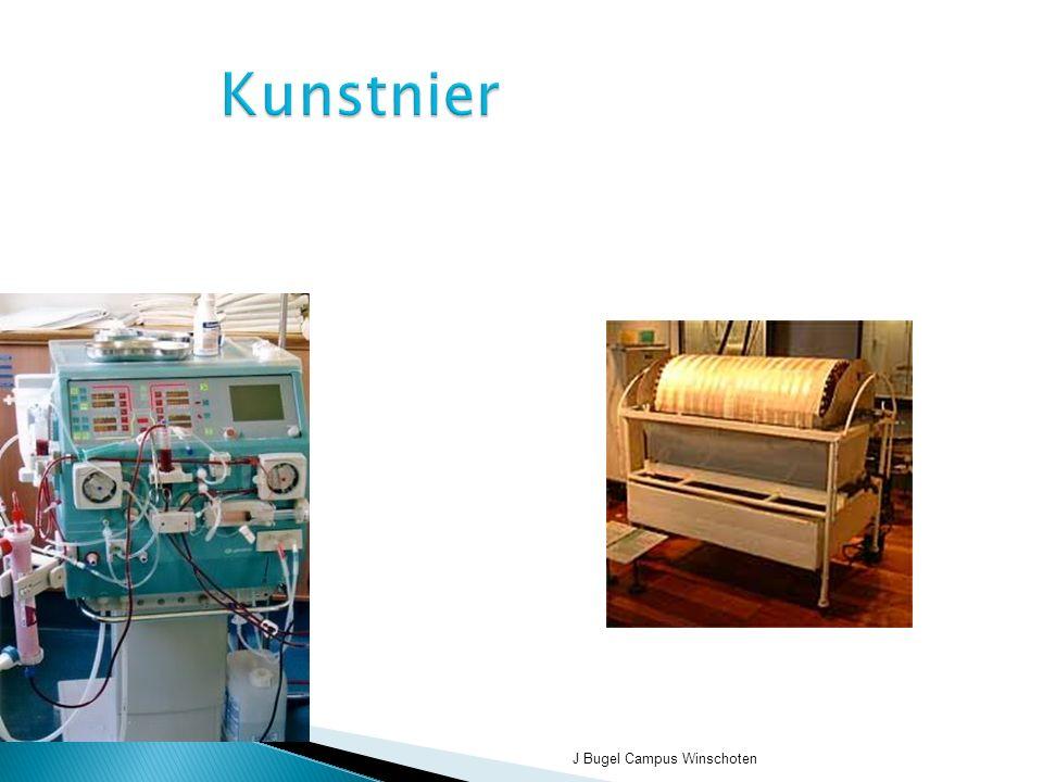J Bugel Campus Winschoten Kunstnier