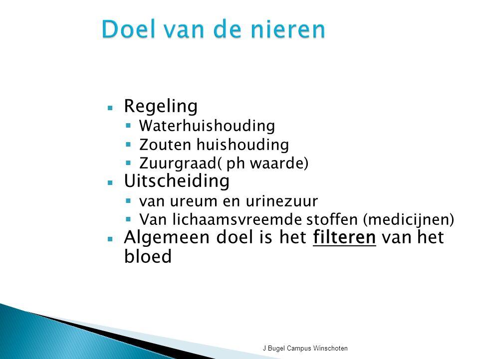 J Bugel Campus Winschoten Doel van de nieren  Regeling  Waterhuishouding  Zouten huishouding  Zuurgraad( ph waarde)  Uitscheiding  van ureum en urinezuur  Van lichaamsvreemde stoffen (medicijnen)  Algemeen doel is het filteren van het bloed