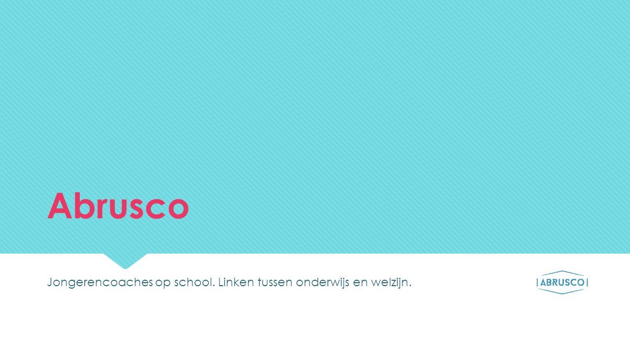 Abrusco (Time out Brussel)  Doel:  Schooluitval-  Gekwalificeerde uitstroom+  Organisatie:  Samenwerkingsverband tussen Onderwijs (3 CLB's en 3 scholengroepen) en Welzijn  Doel:  Schooluitval-  Gekwalificeerde uitstroom+  Organisatie:  Samenwerkingsverband tussen Onderwijs (3 CLB's en 3 scholengroepen) en Welzijn