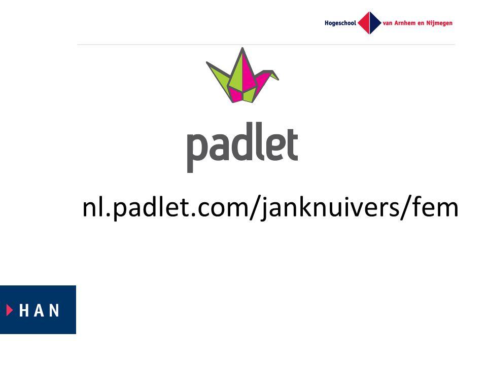 nl.padlet.com/janknuivers/fem