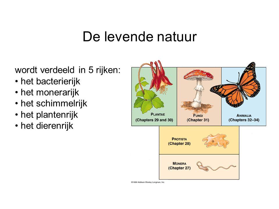 wordt verdeeld in 5 rijken: het bacterierijk het monerarijk het schimmelrijk het plantenrijk het dierenrijk De levende natuur