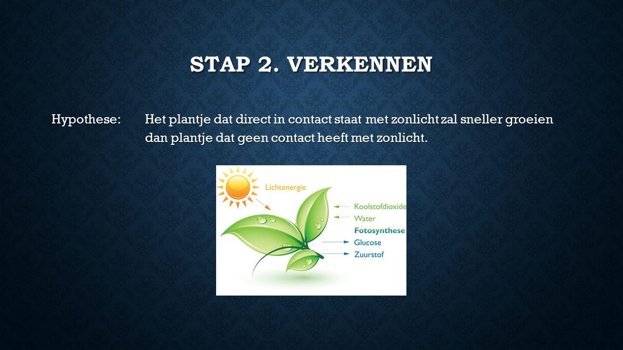 STAP 2. VERKENNEN Hypothese: Het plantje dat direct in contact staat met zonlicht zal sneller groeien dan plantje dat geen contact heeft met zonlicht.