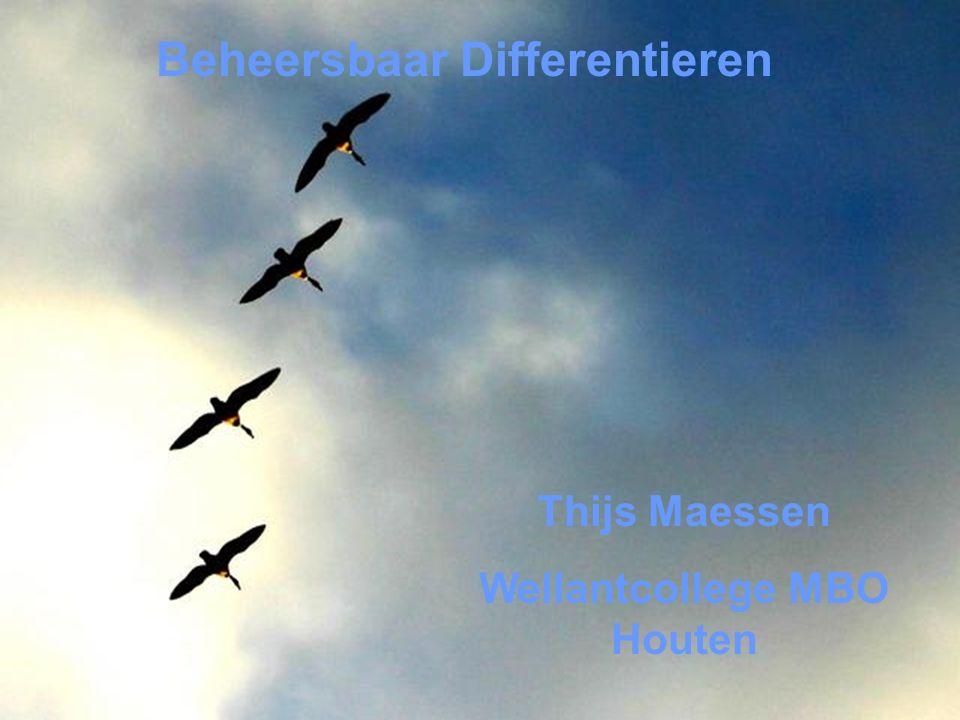 Thijs Maessen Wellantcollege MBO Houten Beheersbaar Differentieren