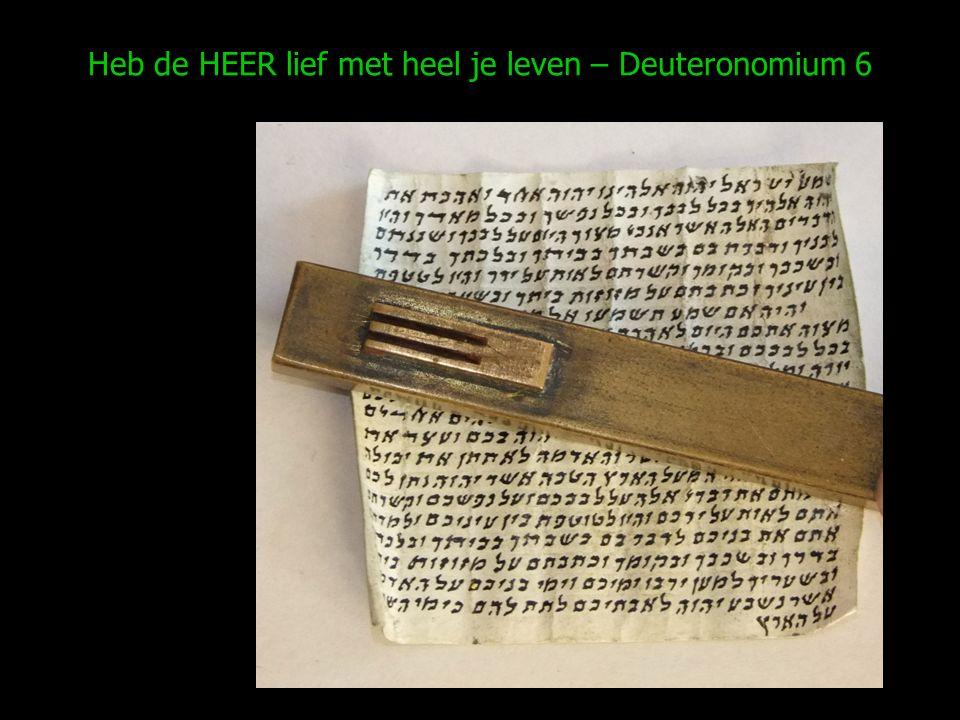 Heb de HEER lief met heel je leven – Deuteronomium 6