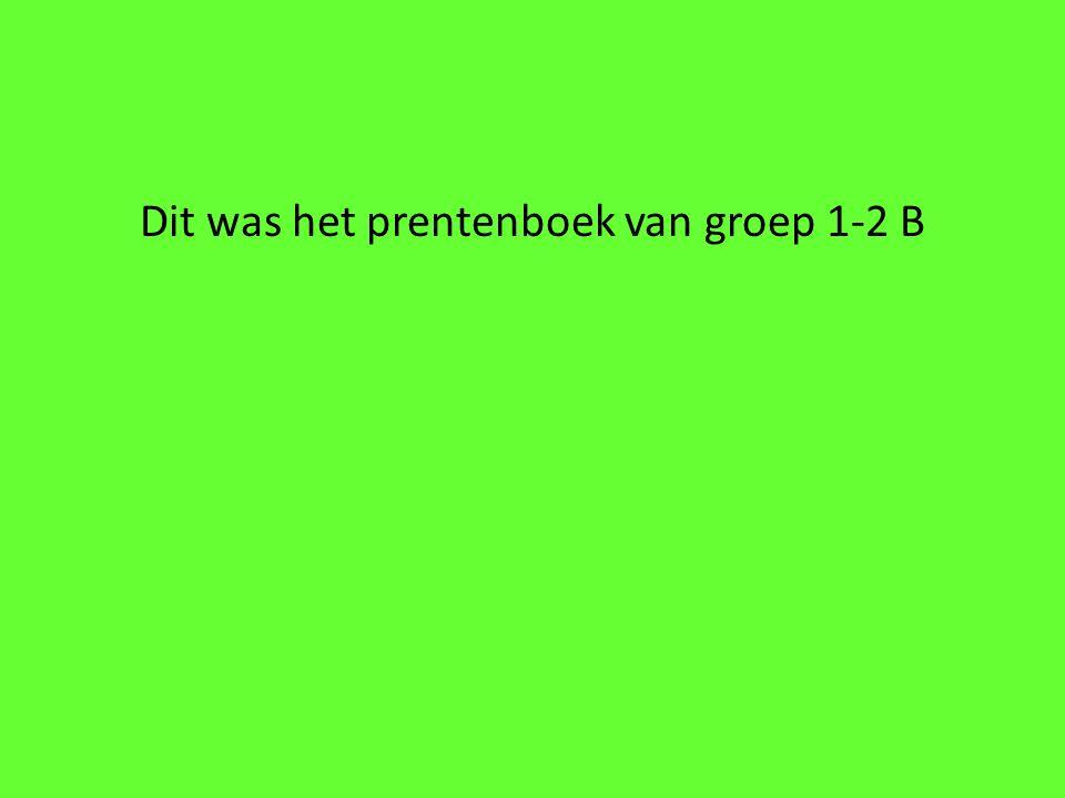 Dit was het prentenboek van groep 1-2 B
