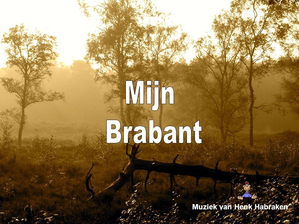Vanne Brabantse boer