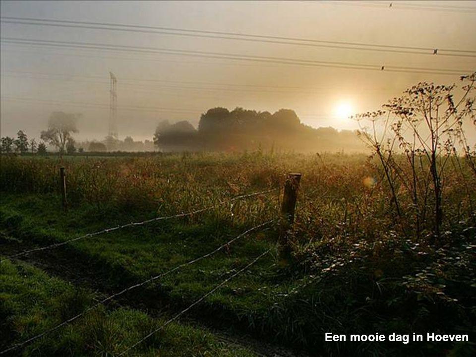 De basiliek in Oudenbosch