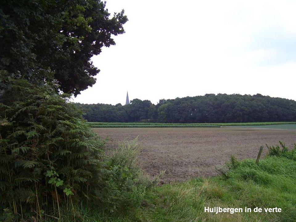 Pastorie in Moerstraten