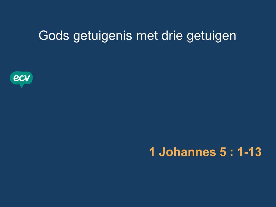 Drie getuigen: - het water (doop Jezus / onze doop) 1 Johannes 5 : 1-13