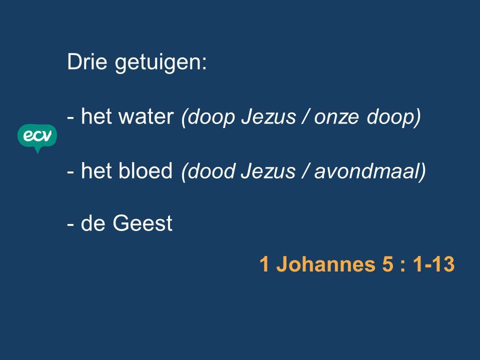 Drie getuigen: - het water (doop Jezus / onze doop) - het bloed (dood Jezus / avondmaal) - de Geest 1 Johannes 5 : 1-13