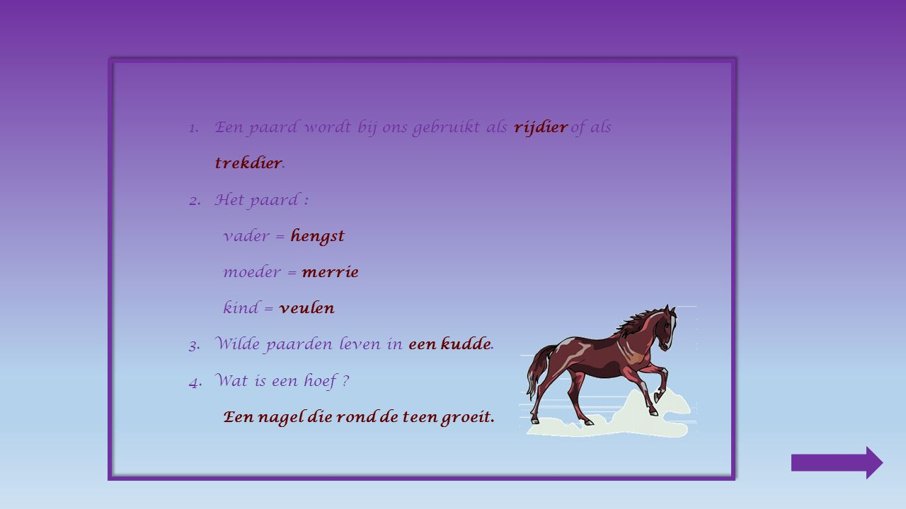 5.Vergelijk : werkpaard :rijpaard : zwaarlicht traagsnel sterk 6.Een paard eet graag : ________ - ________ - ________ - ________ Klik op het juiste antwoord in knollen wortels haverwormen gras klaver