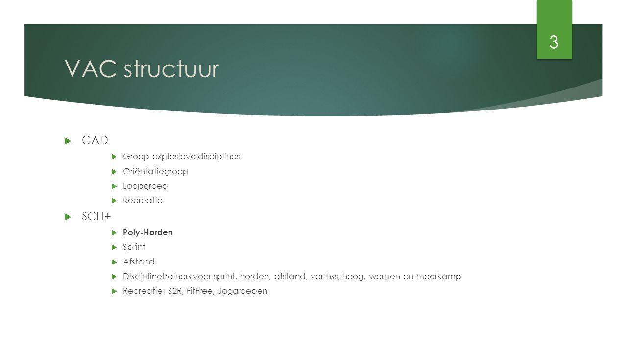 VAC structuur  CAD  Groep explosieve disciplines  Oriëntatiegroep  Loopgroep  Recreatie  SCH+  Poly-Horden  Sprint  Afstand  Disciplinetrainers voor sprint, horden, afstand, ver-hss, hoog, werpen en meerkamp  Recreatie: S2R, FitFree, Joggroepen 3