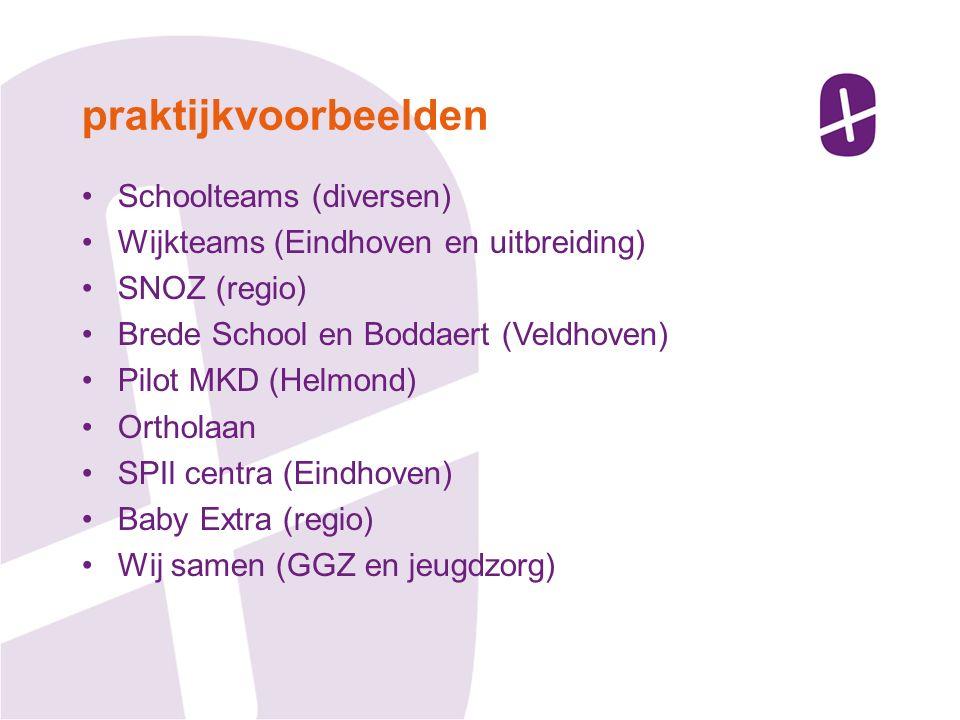 Schoolteams (diversen) Wijkteams (Eindhoven en uitbreiding) SNOZ (regio) Brede School en Boddaert (Veldhoven) Pilot MKD (Helmond) Ortholaan SPIl centra (Eindhoven) Baby Extra (regio) Wij samen (GGZ en jeugdzorg) praktijkvoorbeelden