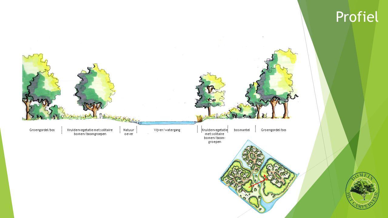 Profiel Vijver/watergangKruidenvegetatie met solitaire bomen/boomgroepen Kruidenvegetatie met solitaire bomen/boom- groepen bosmantel Groengordel/bos Natuur oever Groengordel/bos