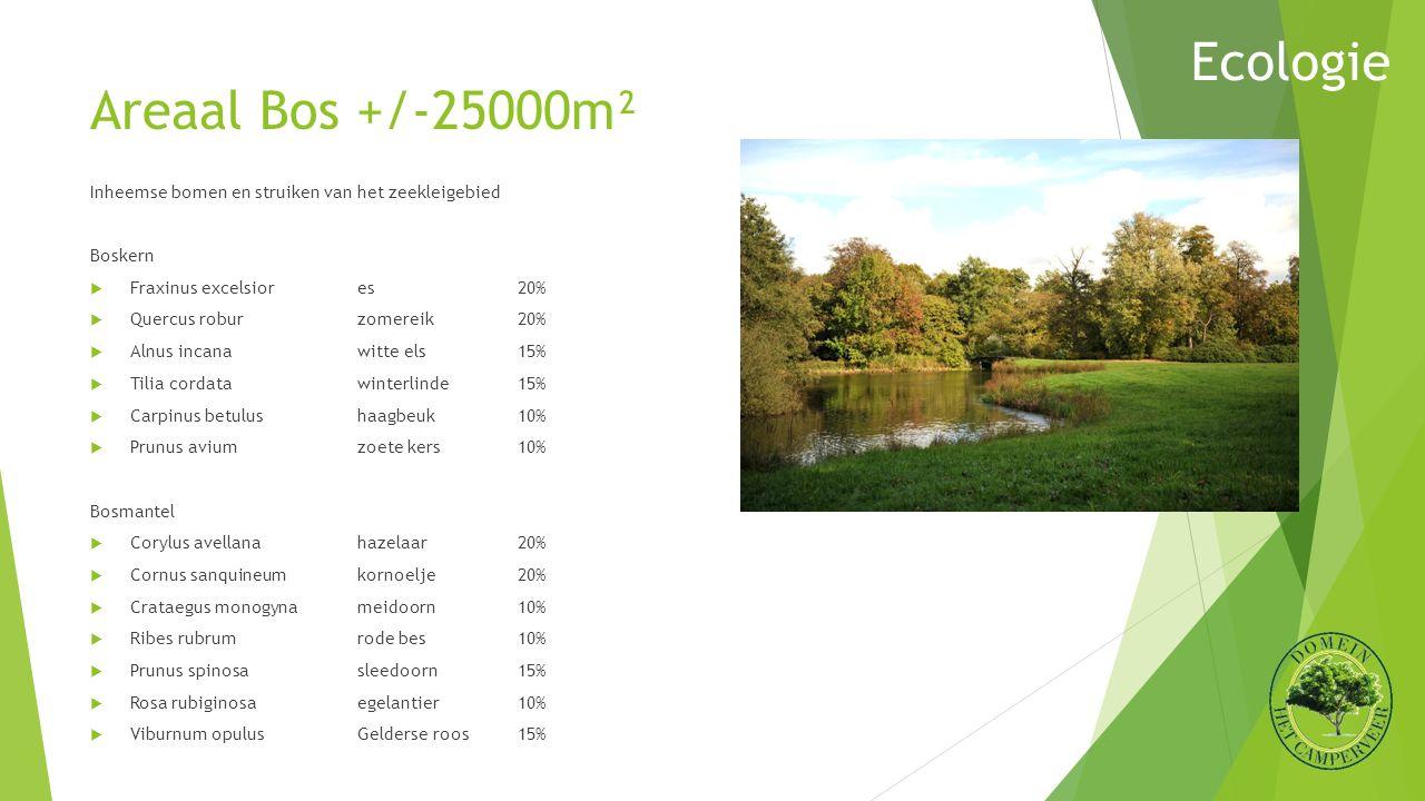Areaal Bos +/-25000m² Inheemse bomen en struiken van het zeekleigebied Boskern  Fraxinus excelsiores20%  Quercus roburzomereik20%  Alnus incanawitt