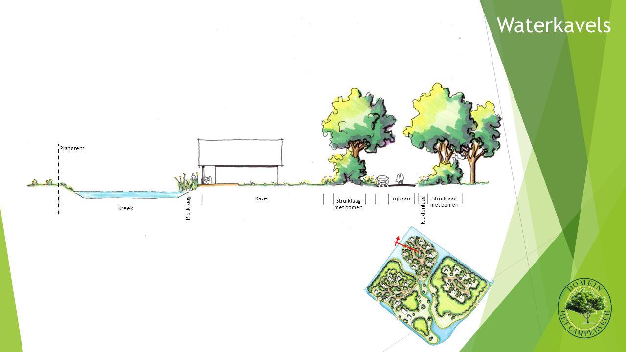 rijbaanKavel RietkraagKrudenlaag Struiklaag met bomen Kreek Plangrens Struiklaag met bomen Waterkavels