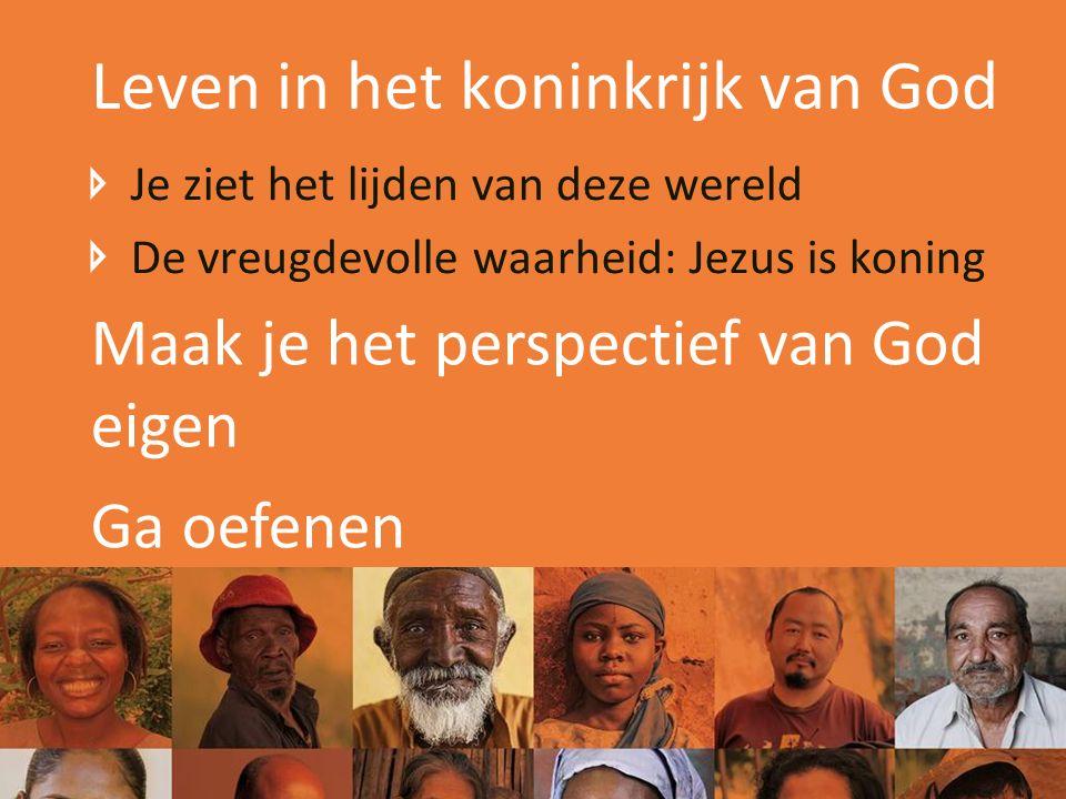 Leven in het koninkrijk van God Je ziet het lijden van deze wereld De vreugdevolle waarheid: Jezus is koning Maak je het perspectief van God eigen Ga oefenen