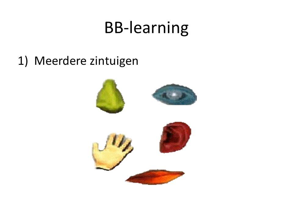BB-learning 1)Meerdere zintuigen