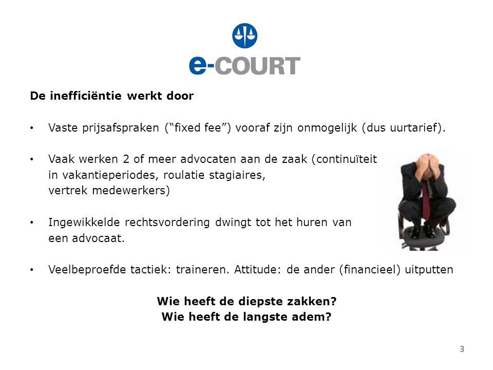 11 januari 2010: Stichting E-Court 1.Onafhankelijke stichting 2.Eenvoudige procedure (8 weken) 3.Geen ingewikkelde regels: 1 loket, 1 soort procedure 4.Dwingt adviseurs van partijen tot efficiënt procederen: hoofdzaken 5.Rechters: specialisatie en ervaring (min.