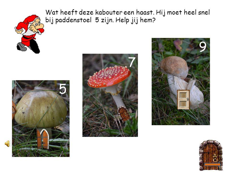 2 4 Oh, oh, wat gaat het karretje hard.Straks botst hij nog tegen paddenstoel 7 aan.