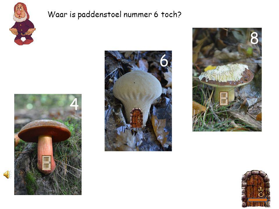 2 4 Help jij de kabouter paddenstoel 4 vinden? 2