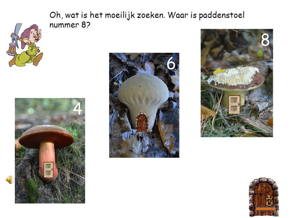 2 4 Waar is paddenstoel nummer 6 toch? 2