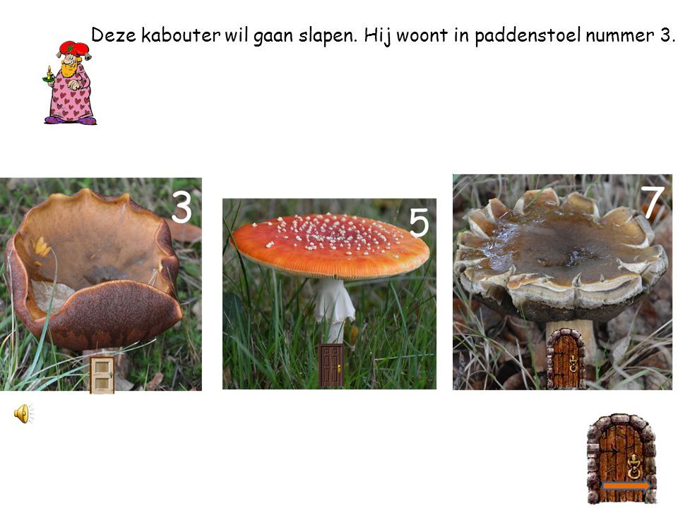 Deze kabouter wil gaan slapen. Hij woont in paddenstoel nummer 3.