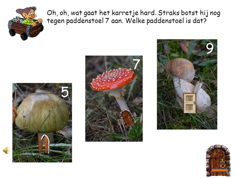 2 4 Deze kabouter gaat naar zijn vriendje. Hij woont in paddenstoel 9. 2
