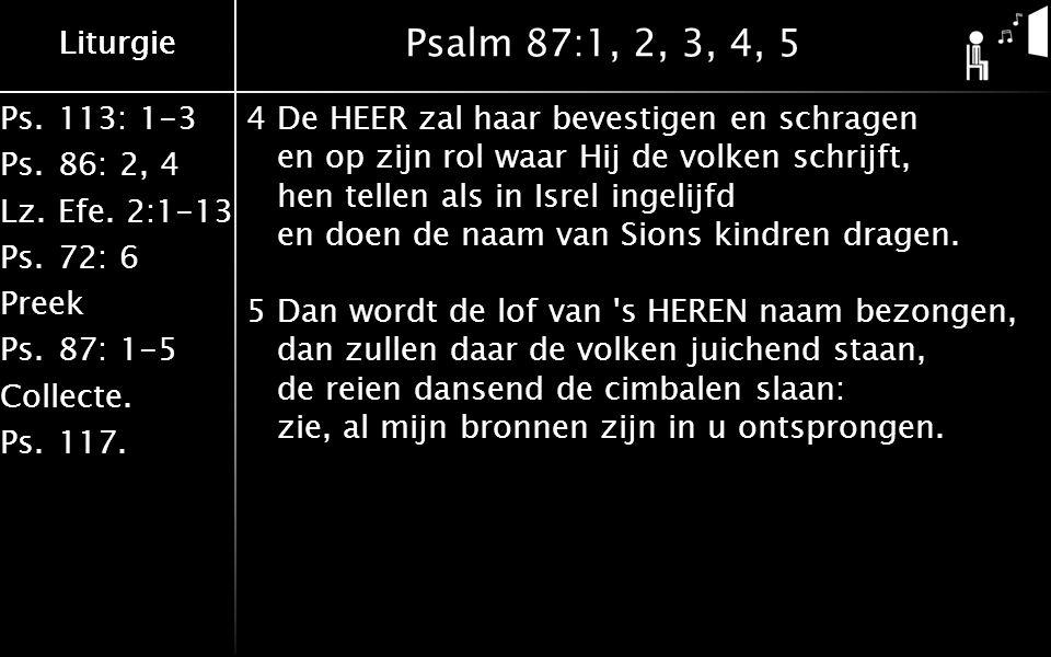 Liturgie Ps.113: 1-3 Ps.86: 2, 4 Lz.Efe. 2:1-13 Ps.72: 6 Preek Ps.87: 1-5 Collecte. Ps.117. Liturgie Psalm 87:1, 2, 3, 4, 5 4De HEER zal haar bevestig