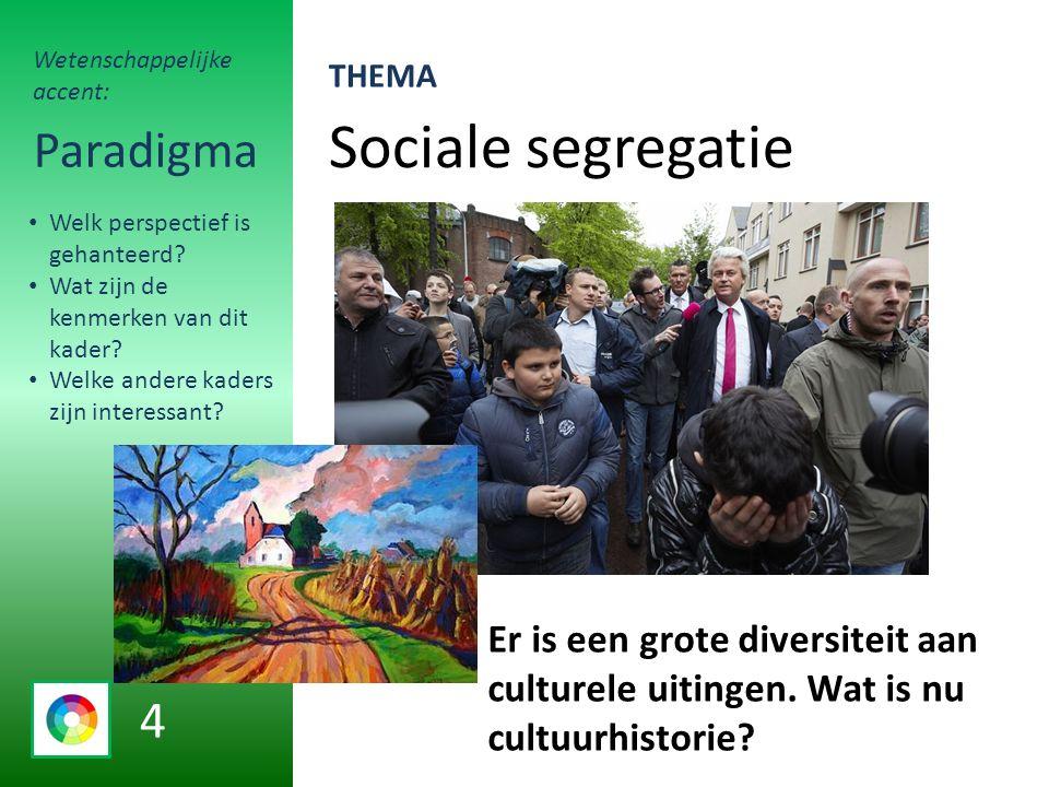 Sociale segregatie Paradigma Er is een grote diversiteit aan culturele uitingen.