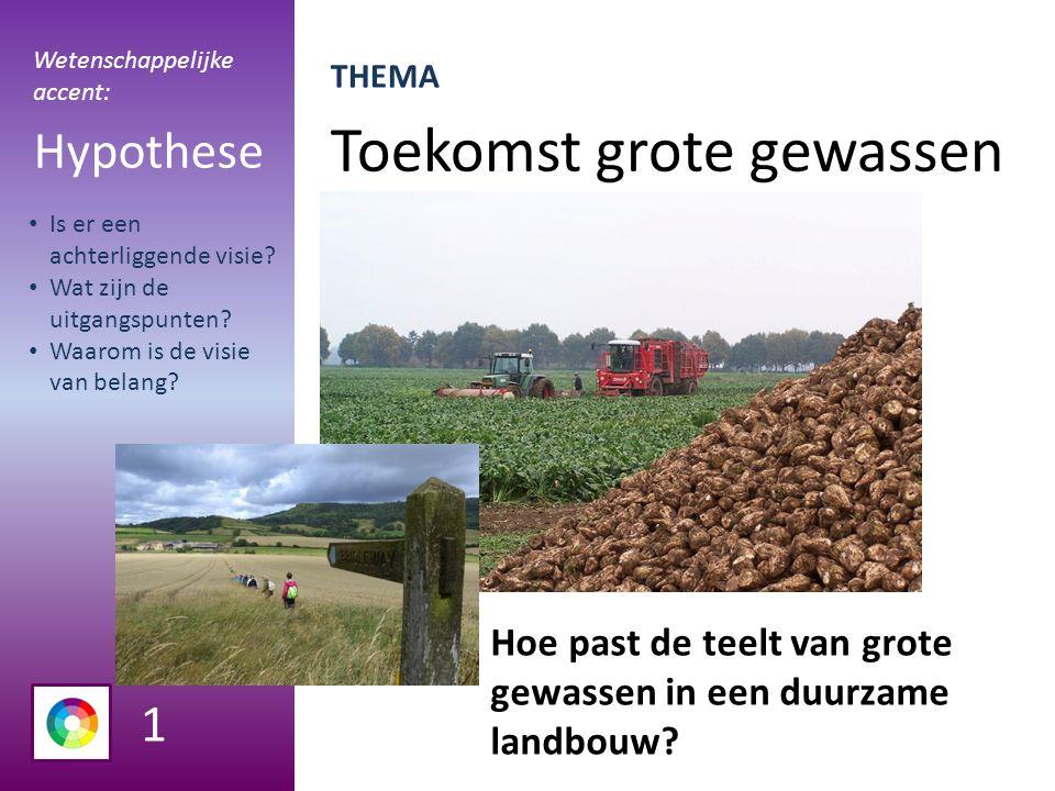 Toekomst grote gewassen Hypothese Hoe past de teelt van grote gewassen in een duurzame landbouw.
