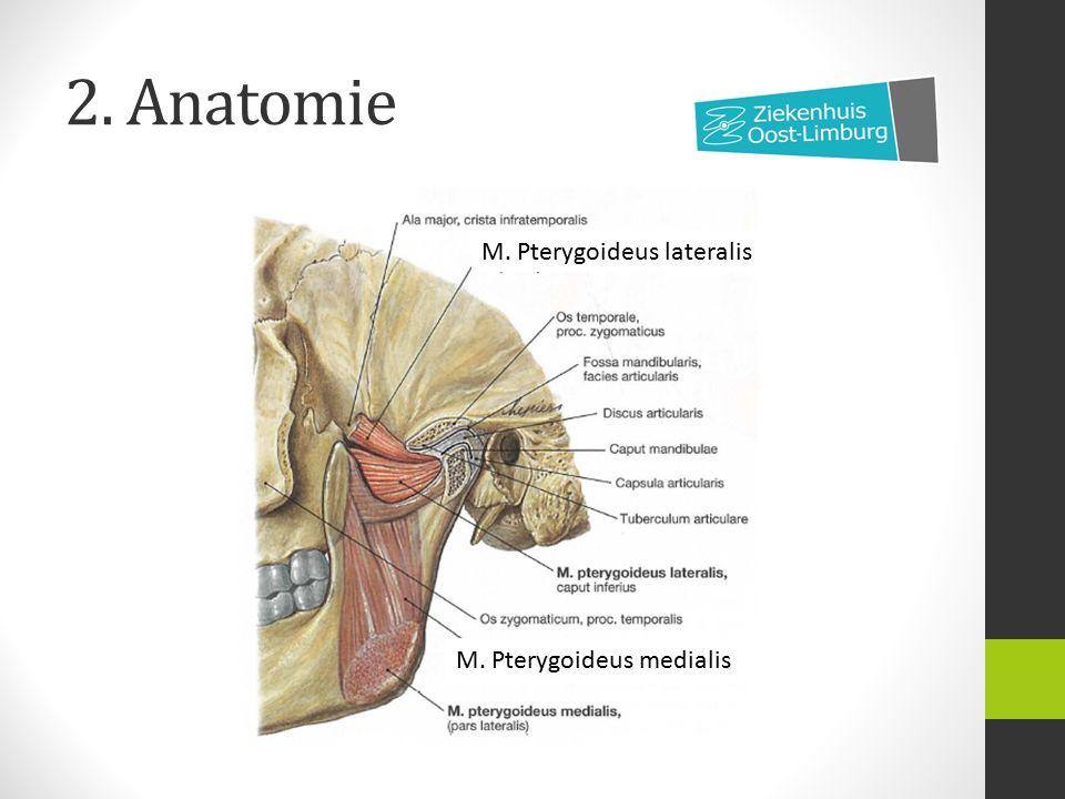 7.Behandeling B. Pijncontrole/medicatie SYSTEMISCH Analgetica: Paracetamol, NSAID (e.g.