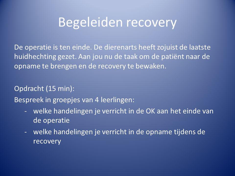 Begeleiden recovery De operatie is ten einde. De dierenarts heeft zojuist de laatste huidhechting gezet. Aan jou nu de taak om de patiënt naar de opna