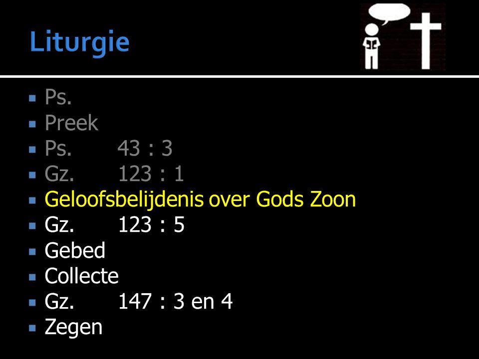  Ps.  Preek  Ps.43 : 3  Gz. 123 : 1  Geloofsbelijdenis over Gods Zoon  Gz. 123 : 5  Gebed  Collecte  Gz.147 : 3 en 4  Zegen