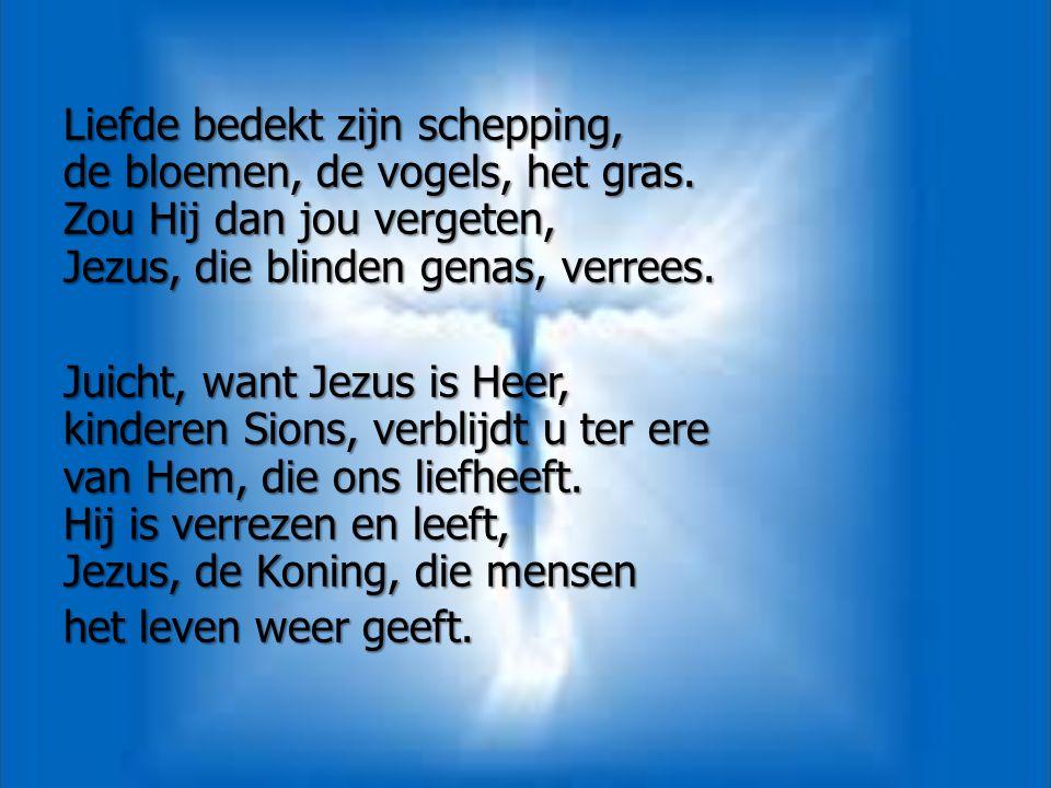 Liefde bedekt zijn schepping, de bloemen, de vogels, het gras. Zou Hij dan jou vergeten, Jezus, die blinden genas, verrees. Juicht, want Jezus is Heer