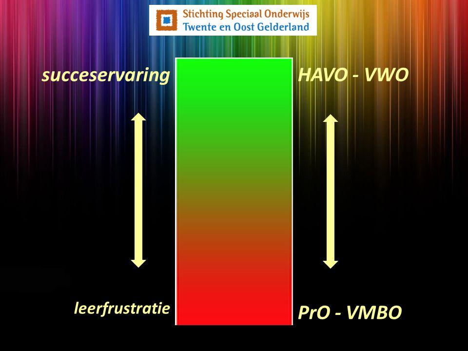 Maar... succeservaring leerfrustratie HAVO - VWO PrO - VMBO