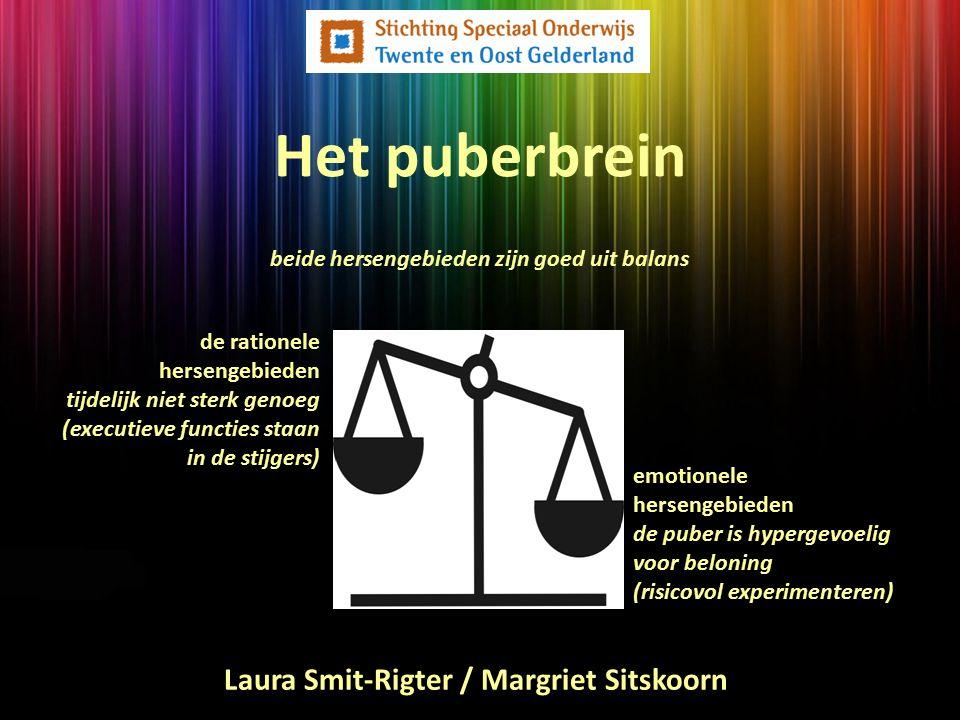 Het puberbrein de rationele hersengebieden tijdelijk niet sterk genoeg (executieve functies staan in de stijgers) emotionele hersengebieden de puber i
