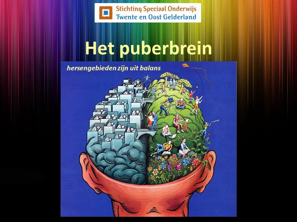 Het puberbrein hersengebieden zijn uit balans
